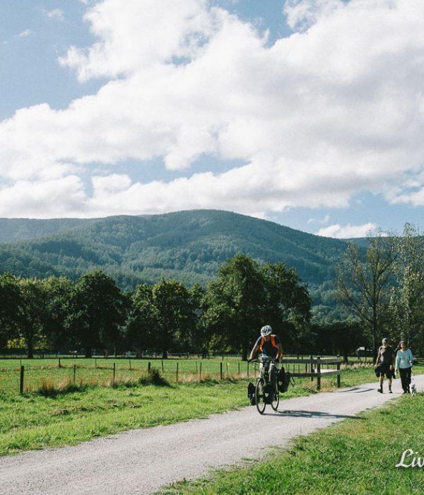 Riding the Warburton Trail